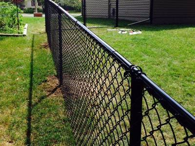 Black backyard chain link fence keep your dogs in.
