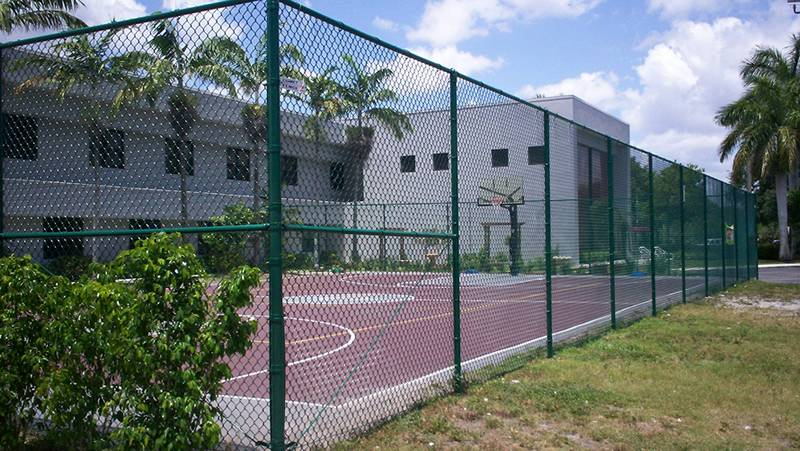 Green vinyl-coated basket ball chain link fence.