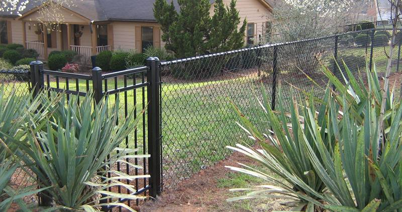 Black chain link fence blends well with the surroundings.