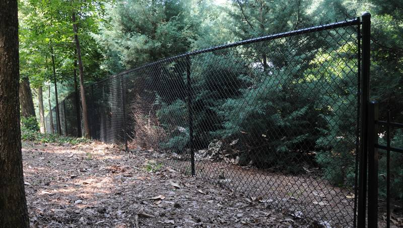 Black vinyl-coated security chain link fence for a landscape.