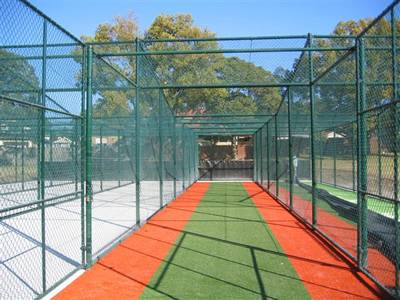 Cricket chain link stopping net in green vinyl-coating.
