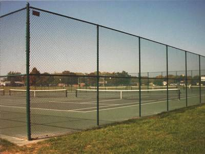 Green vinyl-coated chain link fence with medium rails for strength.