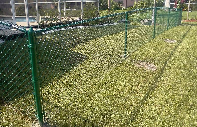 Green Vinyl Coated Chain Link Fence Protecting Amp Decorating