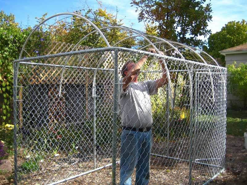 A man is installing small-scale greenhouse with four side chain link fences in his courtyard.
