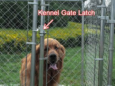 Chain Link Dog Kennel Gate Latch Less Escape