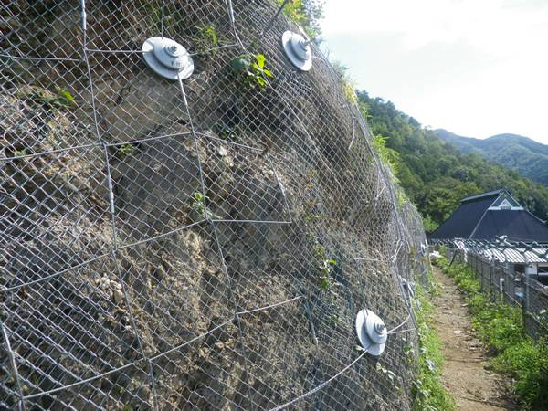 A section of slope is covered with a piece of galvanized chain link fence for protection.
