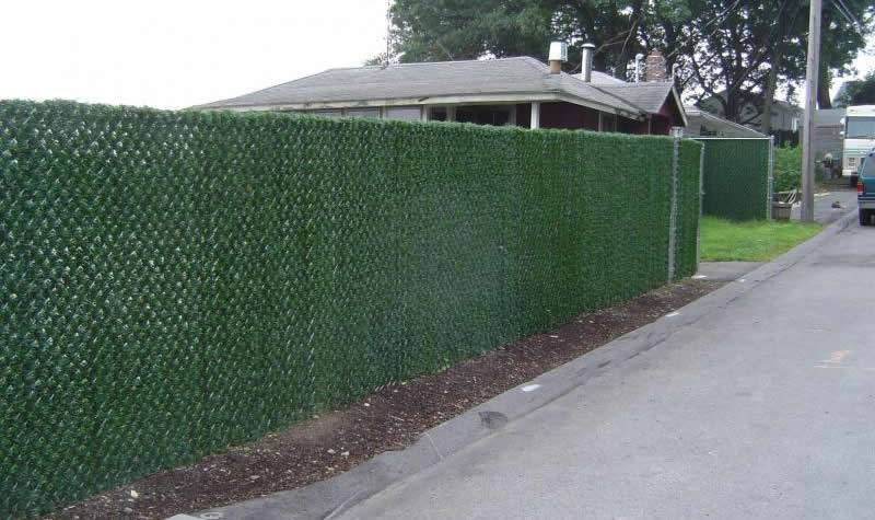 Hedge privacy slat makes your chain link fence look different.