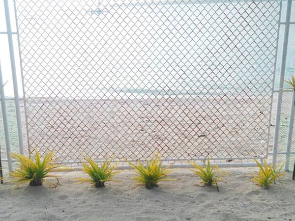 Stainless steel chain link fences are installed along the coastline.