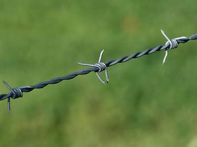 Barbed wire with sharp points for security.